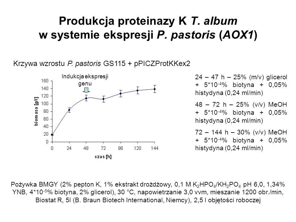 Produkcja proteinazy K T. album w systemie ekspresji P. pastoris (AOX1)