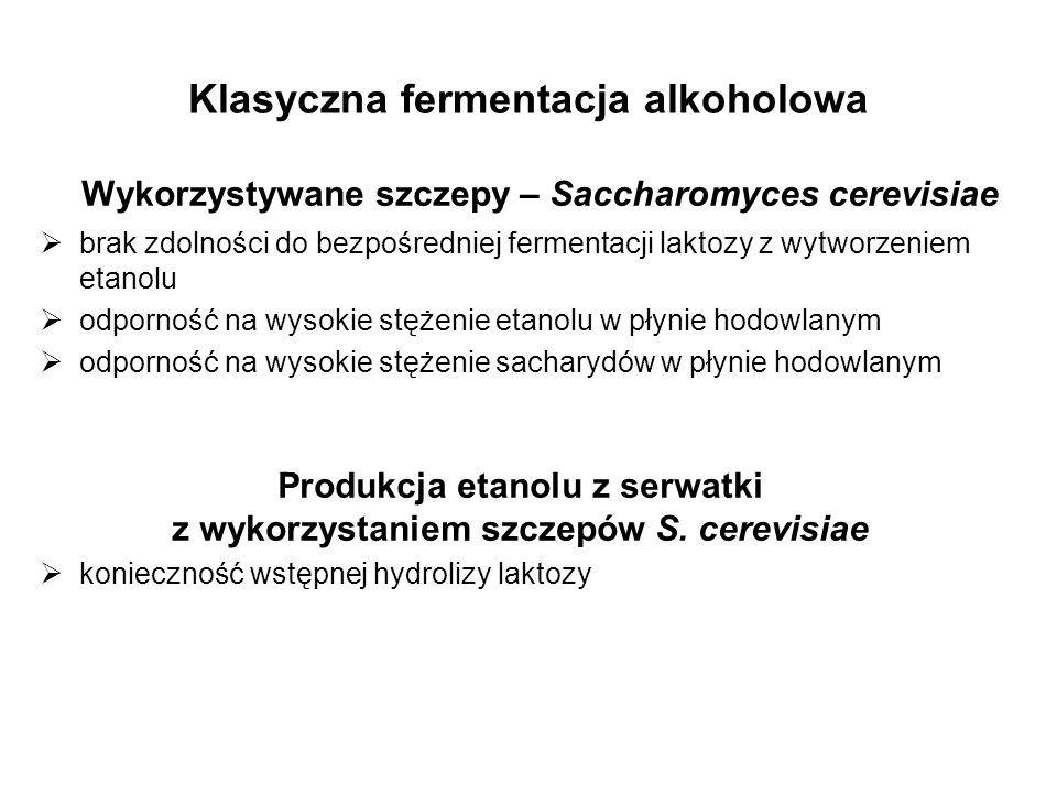 Klasyczna fermentacja alkoholowa