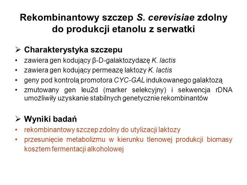 Rekombinantowy szczep S