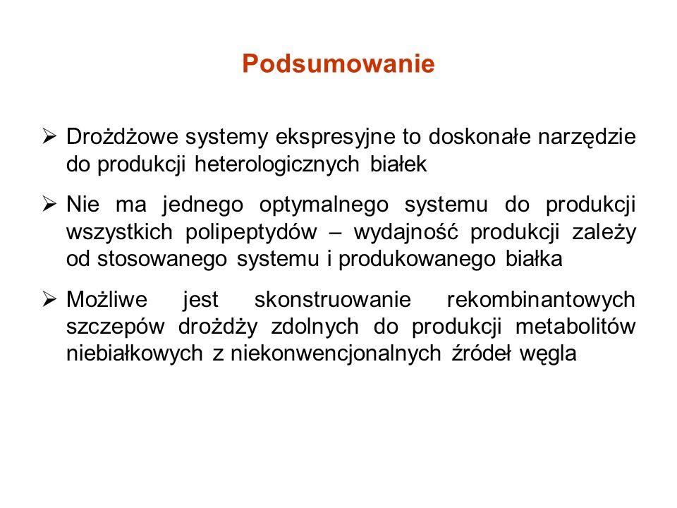 Podsumowanie Drożdżowe systemy ekspresyjne to doskonałe narzędzie do produkcji heterologicznych białek.