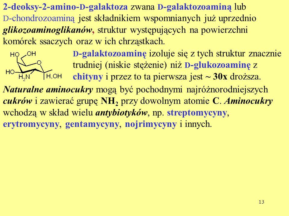 2-deoksy-2-amino-D-galaktoza zwana D-galaktozoaminą lub