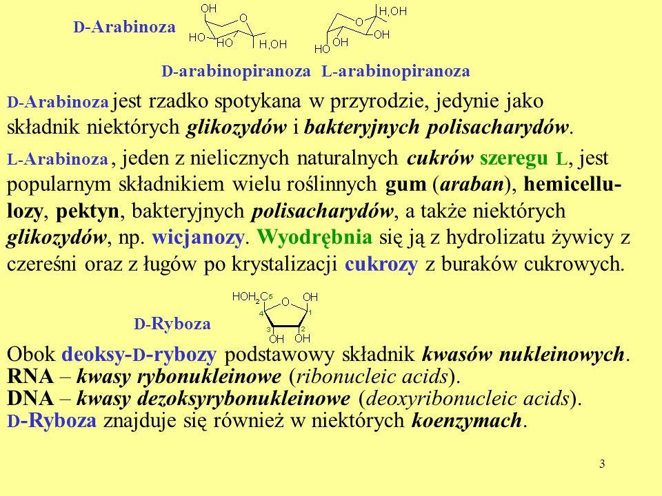 składnik niektórych glikozydów i bakteryjnych polisacharydów.