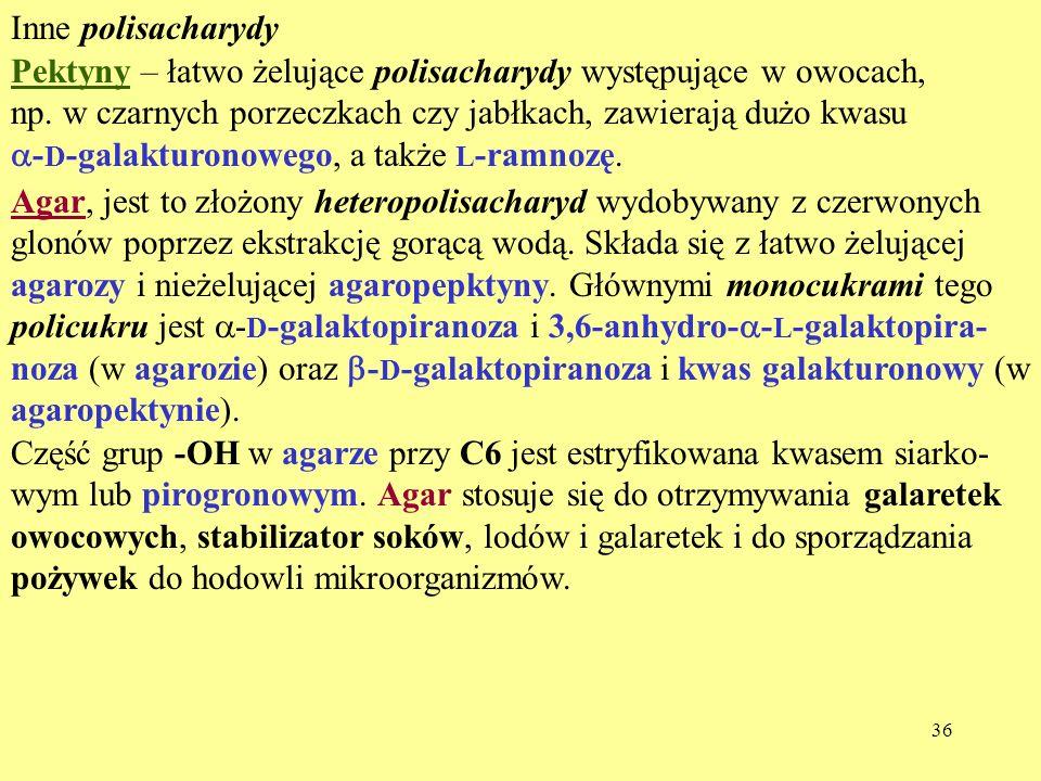 Inne polisacharydy Pektyny – łatwo żelujące polisacharydy występujące w owocach, np. w czarnych porzeczkach czy jabłkach, zawierają dużo kwasu.