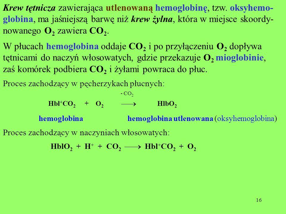 zaś komórek podbiera CO2 i żyłami powraca do płuc.