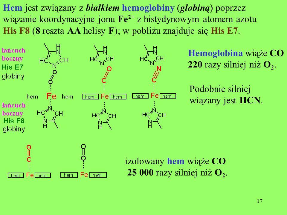 Hem jest związany z białkiem hemoglobiny (globiną) poprzez