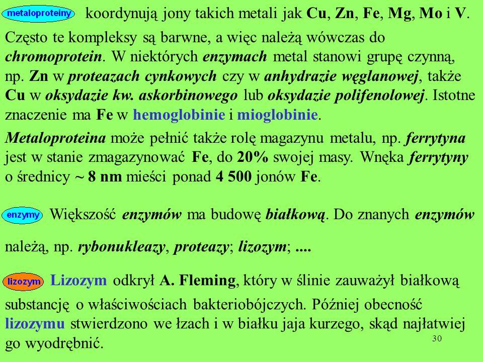 koordynują jony takich metali jak Cu, Zn, Fe, Mg, Mo i V.