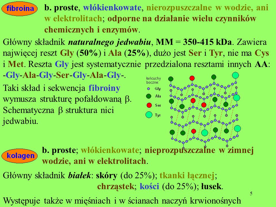 b. proste, włókienkowate, nierozpuszczalne w wodzie, ani w elektrolitach; odporne na działanie wielu czynników chemicznych i enzymów.