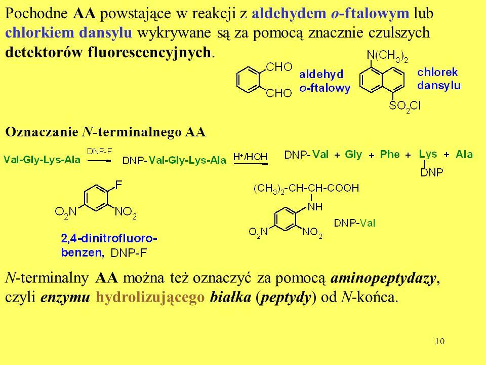 N-terminalny AA można też oznaczyć za pomocą aminopeptydazy,