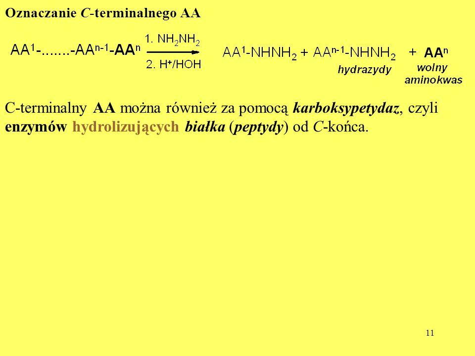 C-terminalny AA można również za pomocą karboksypetydaz, czyli