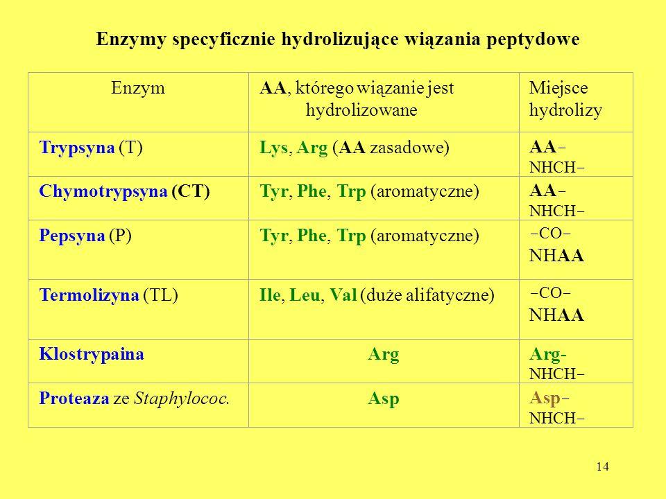 Enzymy specyficznie hydrolizujące wiązania peptydowe