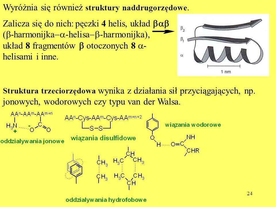 Wyróżnia się również struktury naddrugorzędowe.