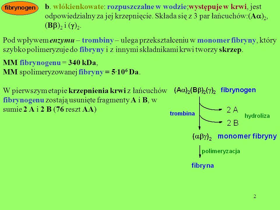 b. włókienkowate: rozpuszczalne w wodzie;występuje w krwi, jest odpowiedzialny za jej krzepnięcie. Składa się z 3 par łańcuchów:(Aa)2, (Bb)2 i (g)2.