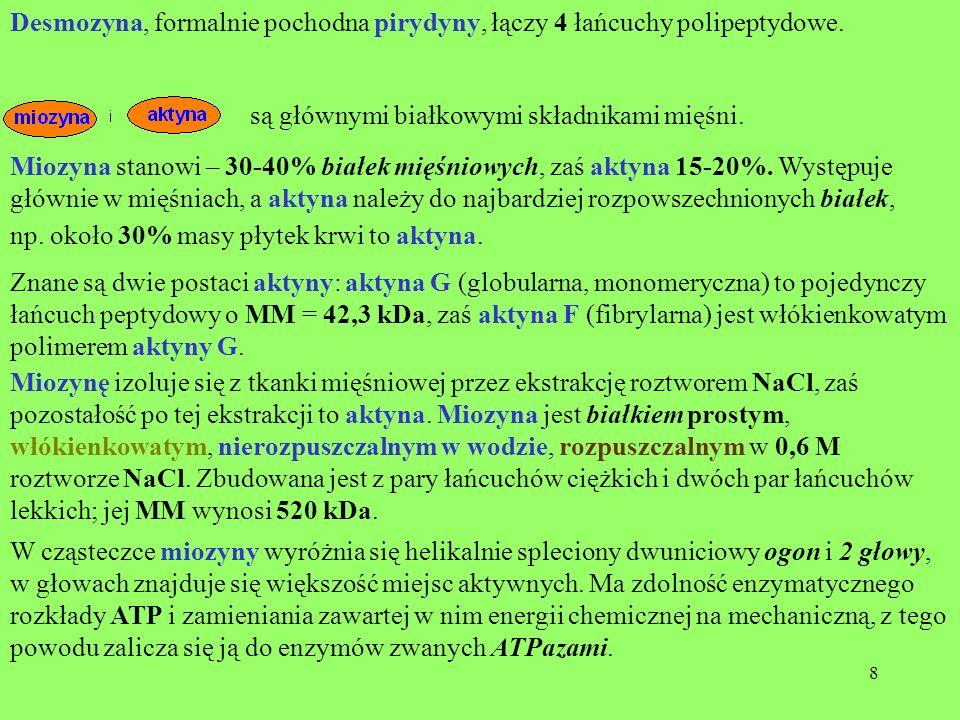 Desmozyna, formalnie pochodna pirydyny, łączy 4 łańcuchy polipeptydowe.