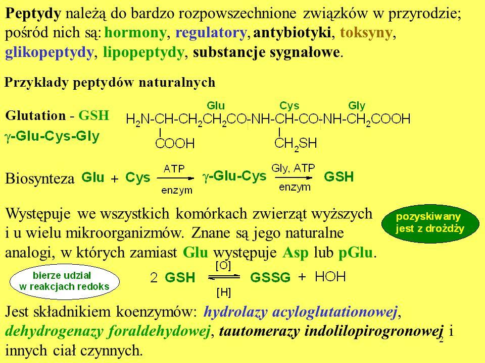 Peptydy należą do bardzo rozpowszechnione związków w przyrodzie; pośród nich są: hormony, regulatory, antybiotyki, toksyny, glikopeptydy, lipopeptydy, substancje sygnałowe.