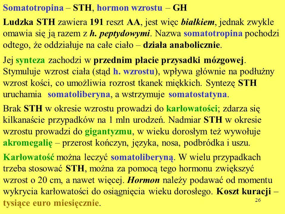 Somatotropina – STH, hormon wzrostu – GH