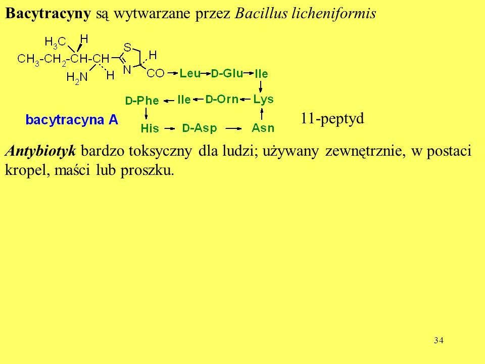 Bacytracyny są wytwarzane przez Bacillus licheniformis