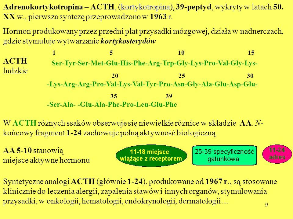 Ser-Tyr-Ser-Met-Glu-His-Phe-Arg-Trp-Gly-Lys-Pro-Val-Gly-Lys-