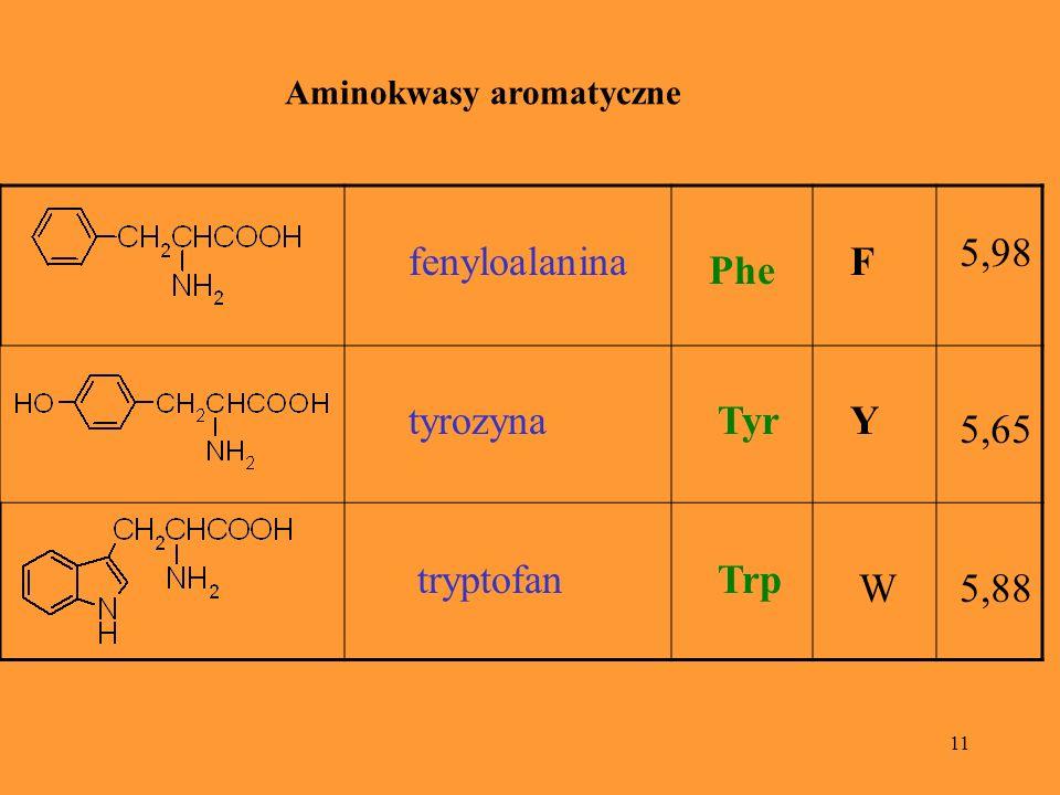 5,98 fenyloalanina F Phe tyrozyna Tyr Y 5,65 tryptofan Trp W 5,88