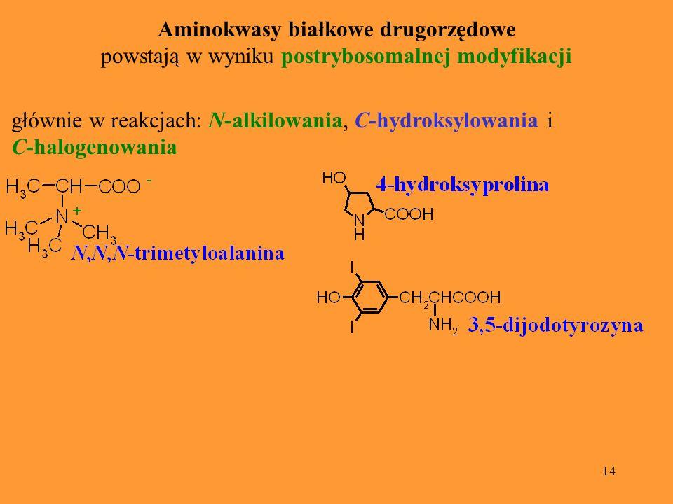 Aminokwasy białkowe drugorzędowe