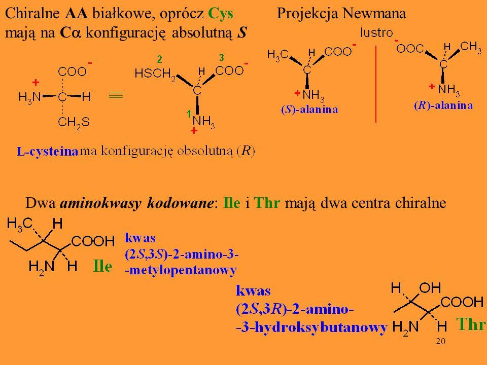 Chiralne AA białkowe, oprócz Cys mają na Ca konfigurację absolutną S