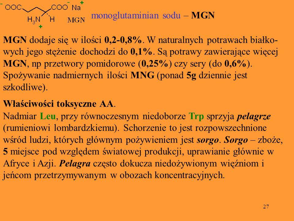 monoglutaminian sodu – MGN
