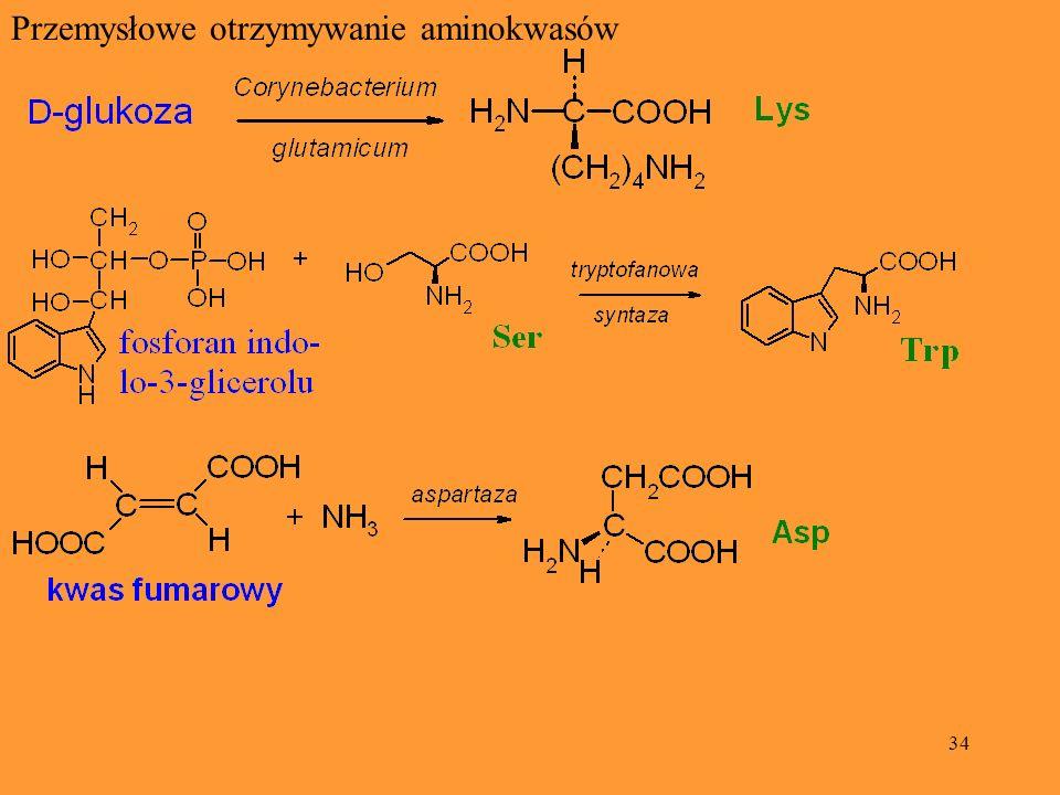 Przemysłowe otrzymywanie aminokwasów