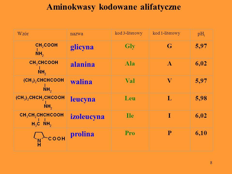 Aminokwasy kodowane alifatyczne