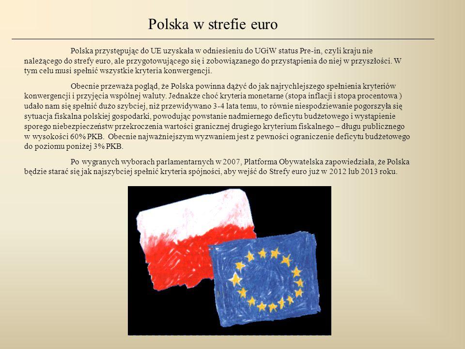 Polska w strefie euro