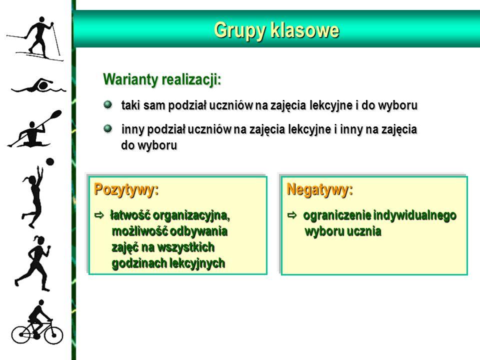 Grupy klasowe Warianty realizacji: Pozytywy: Negatywy: