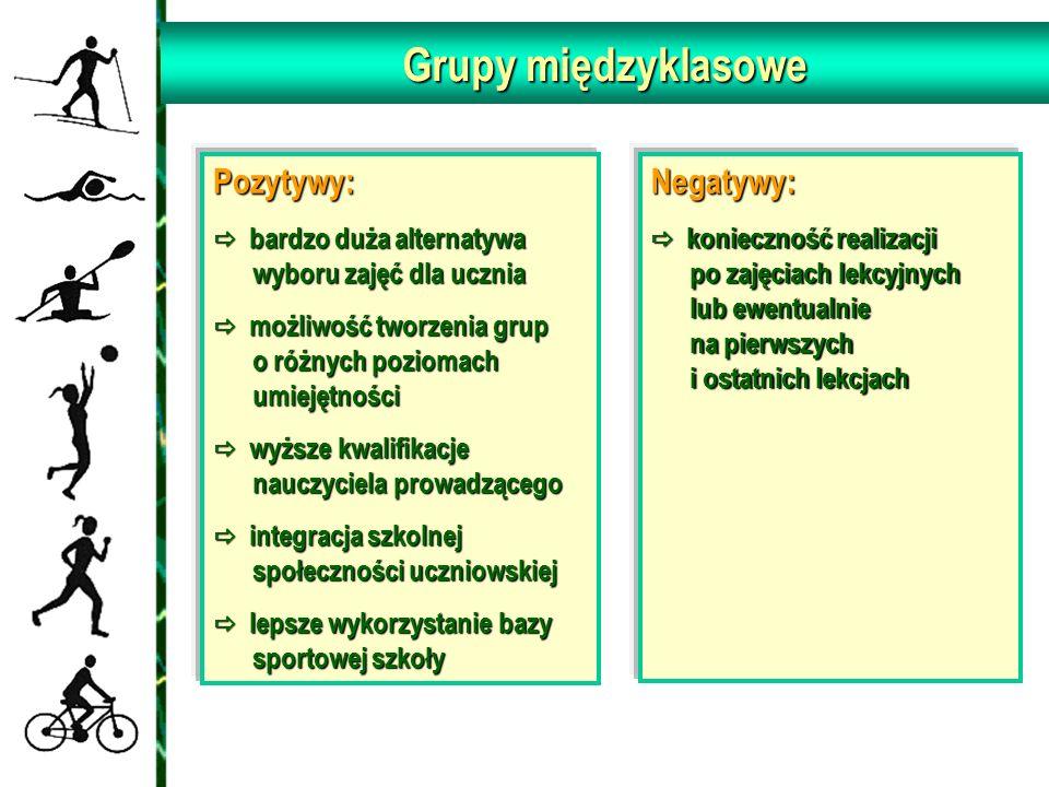 Grupy międzyklasowe Pozytywy: Negatywy: