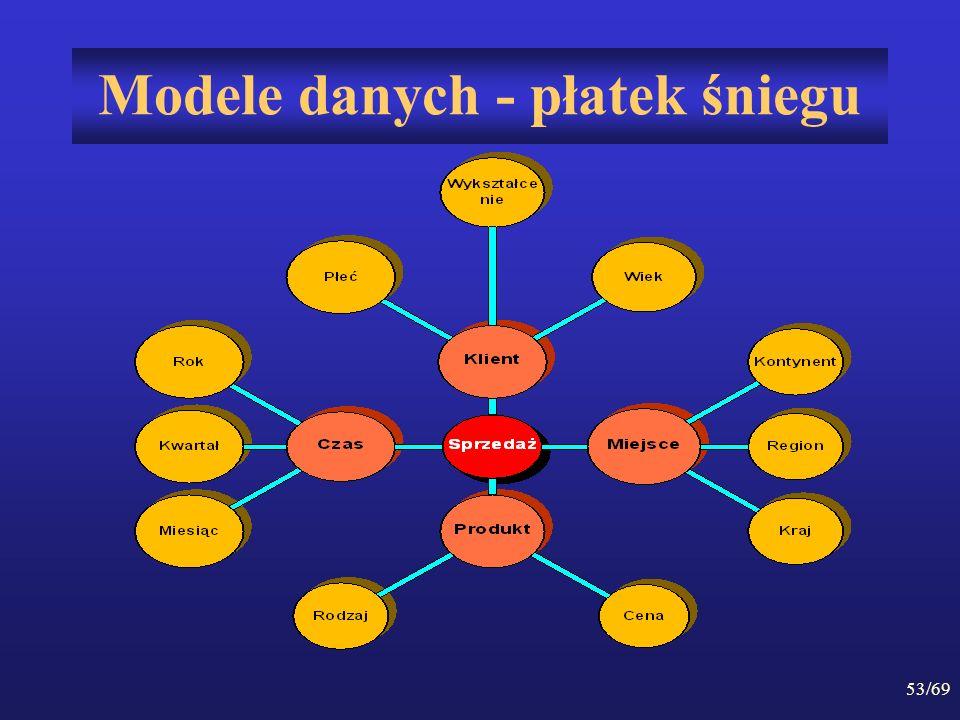 Modele danych - płatek śniegu