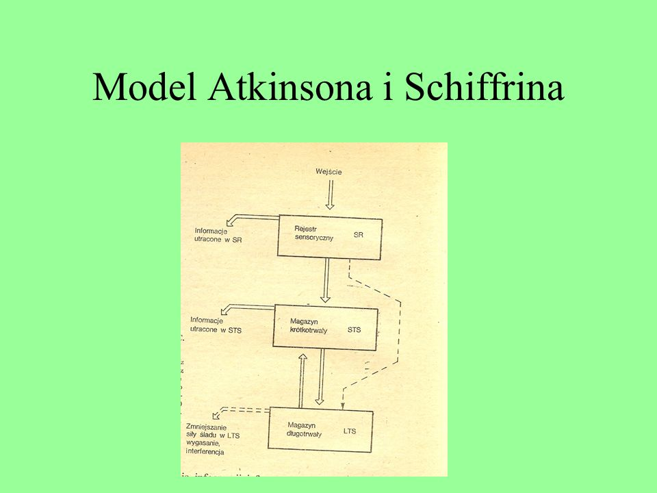 Model Atkinsona i Schiffrina