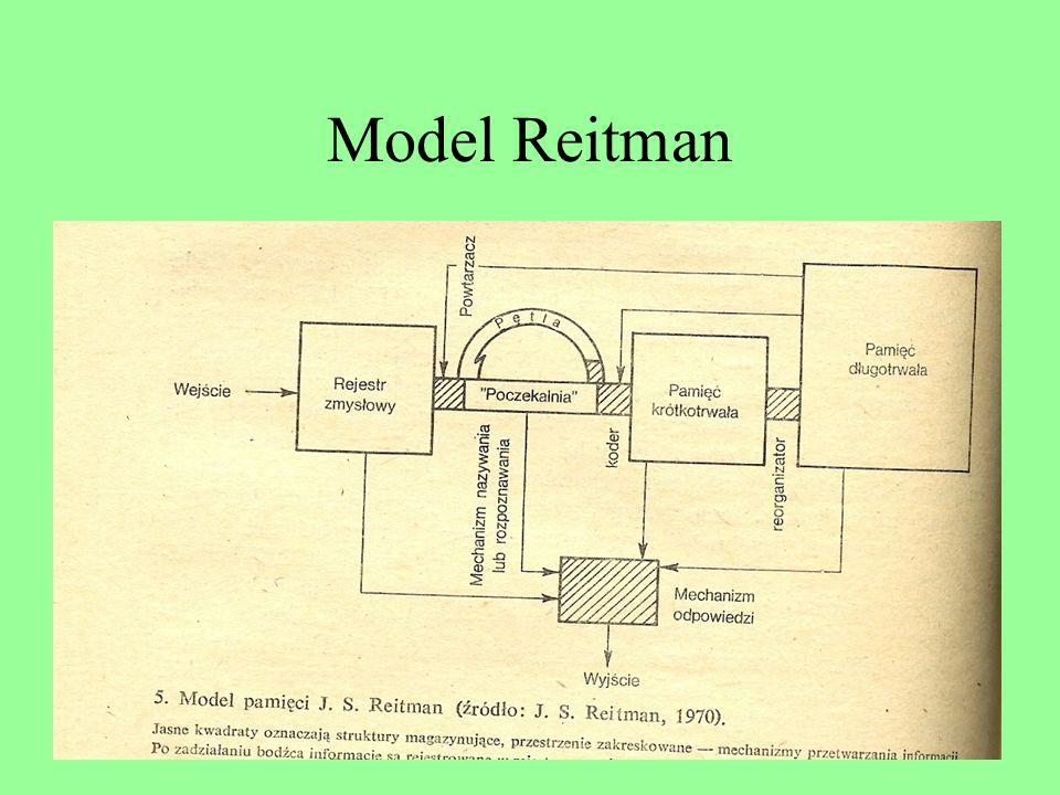 Model Reitman