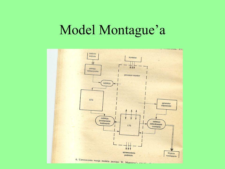 Model Montague'a