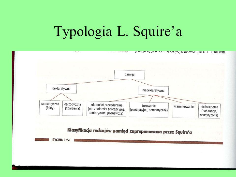 Typologia L. Squire'a