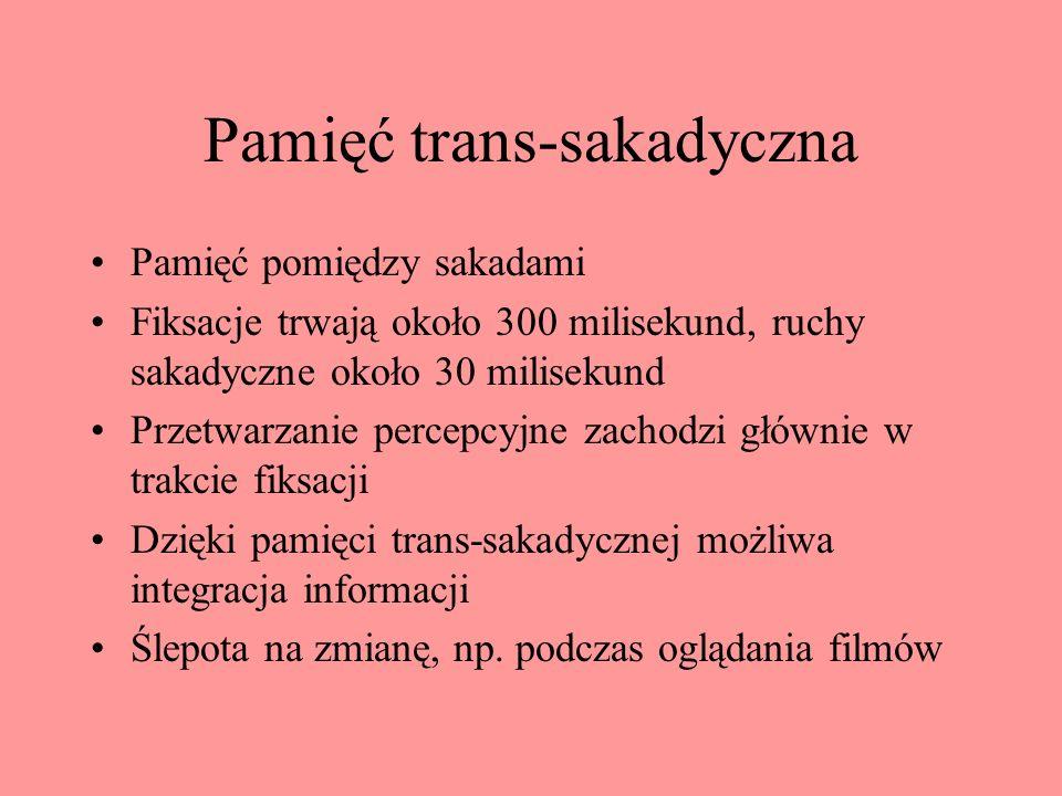 Pamięć trans-sakadyczna