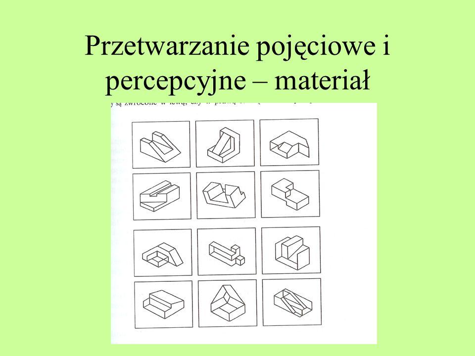 Przetwarzanie pojęciowe i percepcyjne – materiał