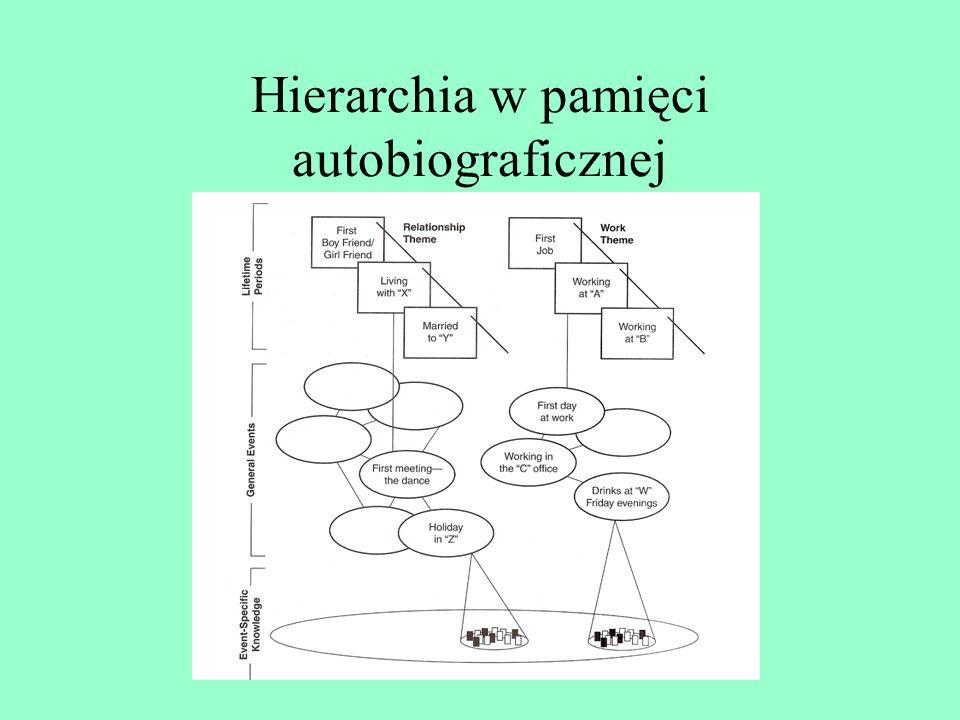 Hierarchia w pamięci autobiograficznej