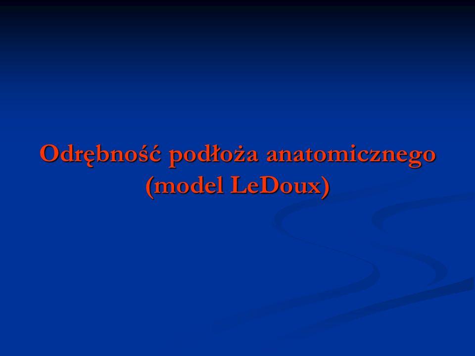 Odrębność podłoża anatomicznego (model LeDoux)