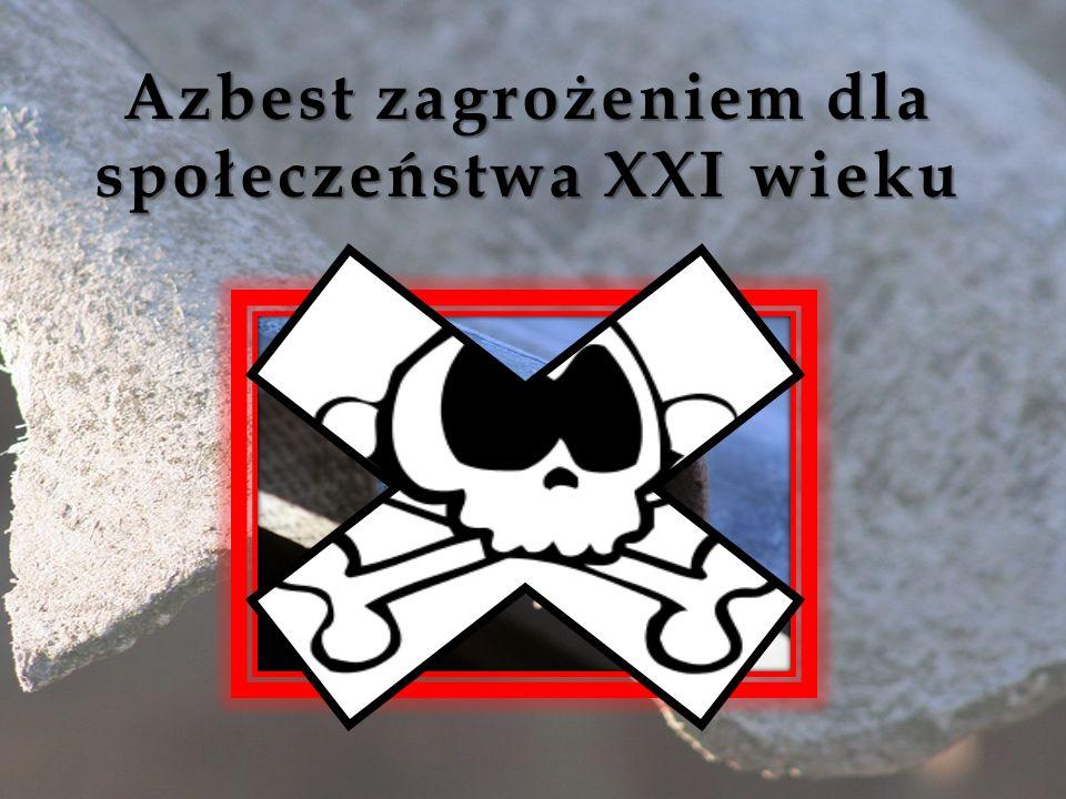 Azbest zagrożeniem dla społeczeństwa XXI wieku