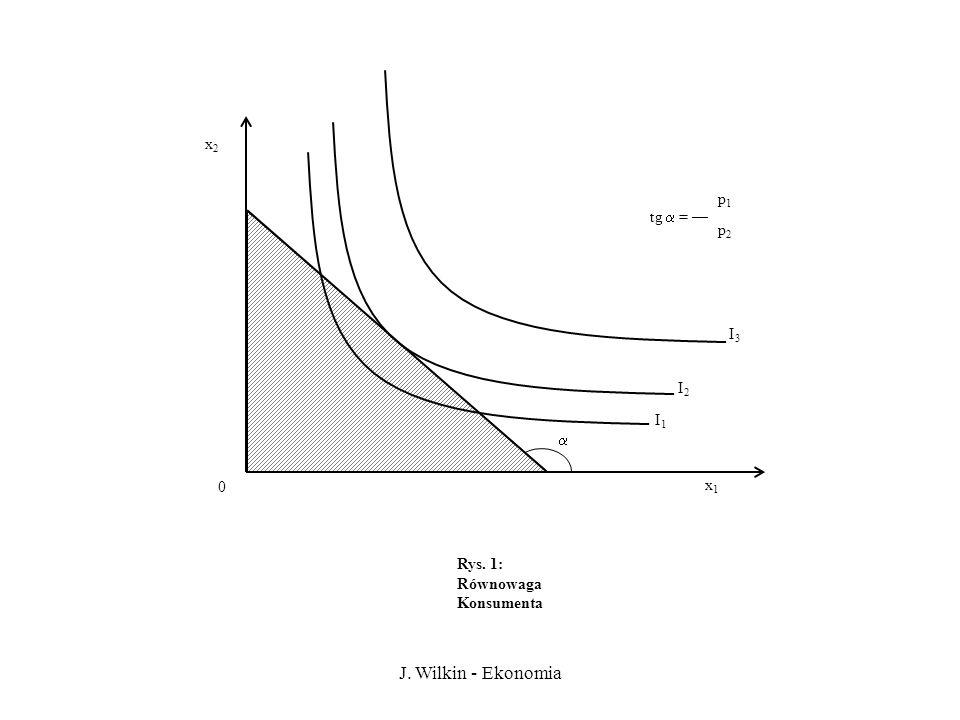 J. Wilkin - Ekonomia x2 p1 tg  = — p2 I3 I2 I1  x1