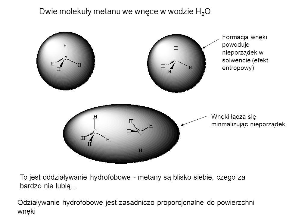 Dwie molekuły metanu we wnęce w wodzie H2O