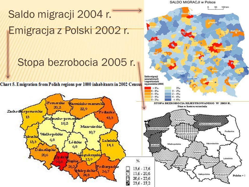Saldo migracji 2004 r. Emigracja z Polski 2002 r