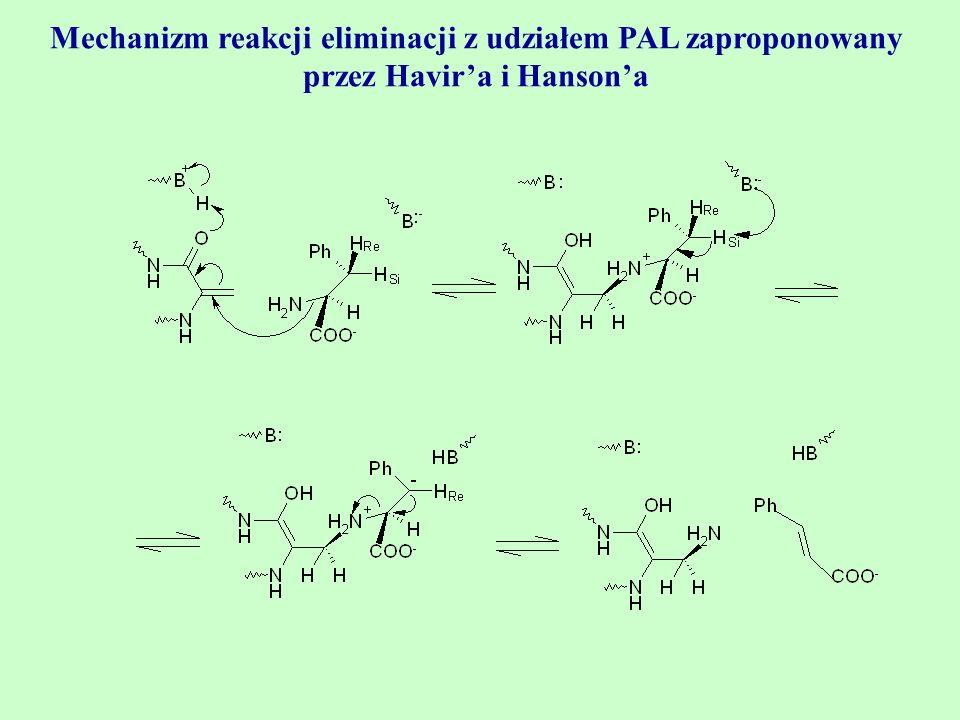 Mechanizm reakcji eliminacji z udziałem PAL zaproponowany przez Havir'a i Hanson'a