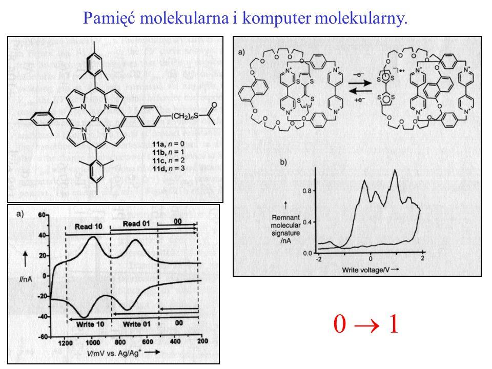 Pamięć molekularna i komputer molekularny.