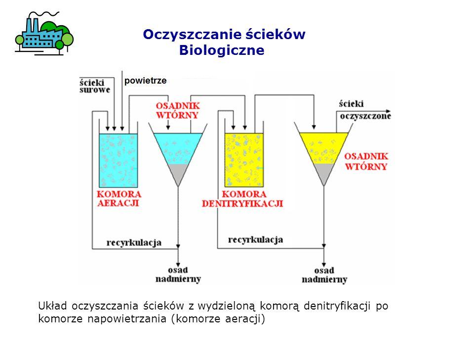 Oczyszczanie ścieków Biologiczne