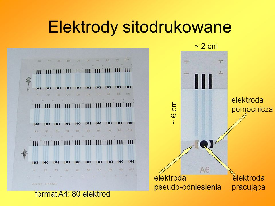 Elektrody sitodrukowane