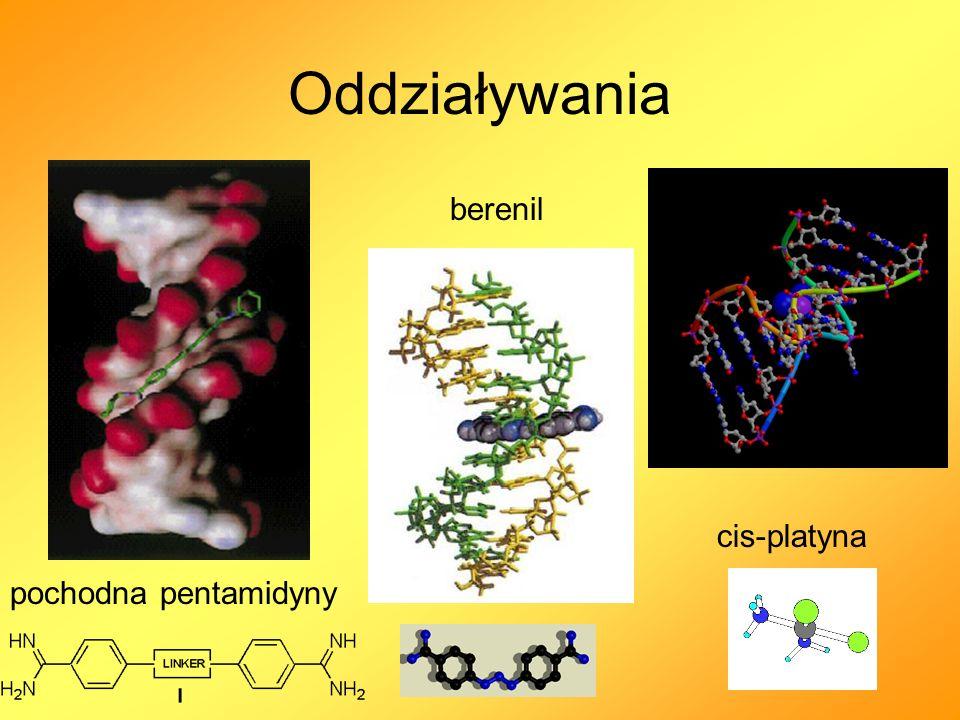 Oddziaływania berenil cis-platyna pochodna pentamidyny
