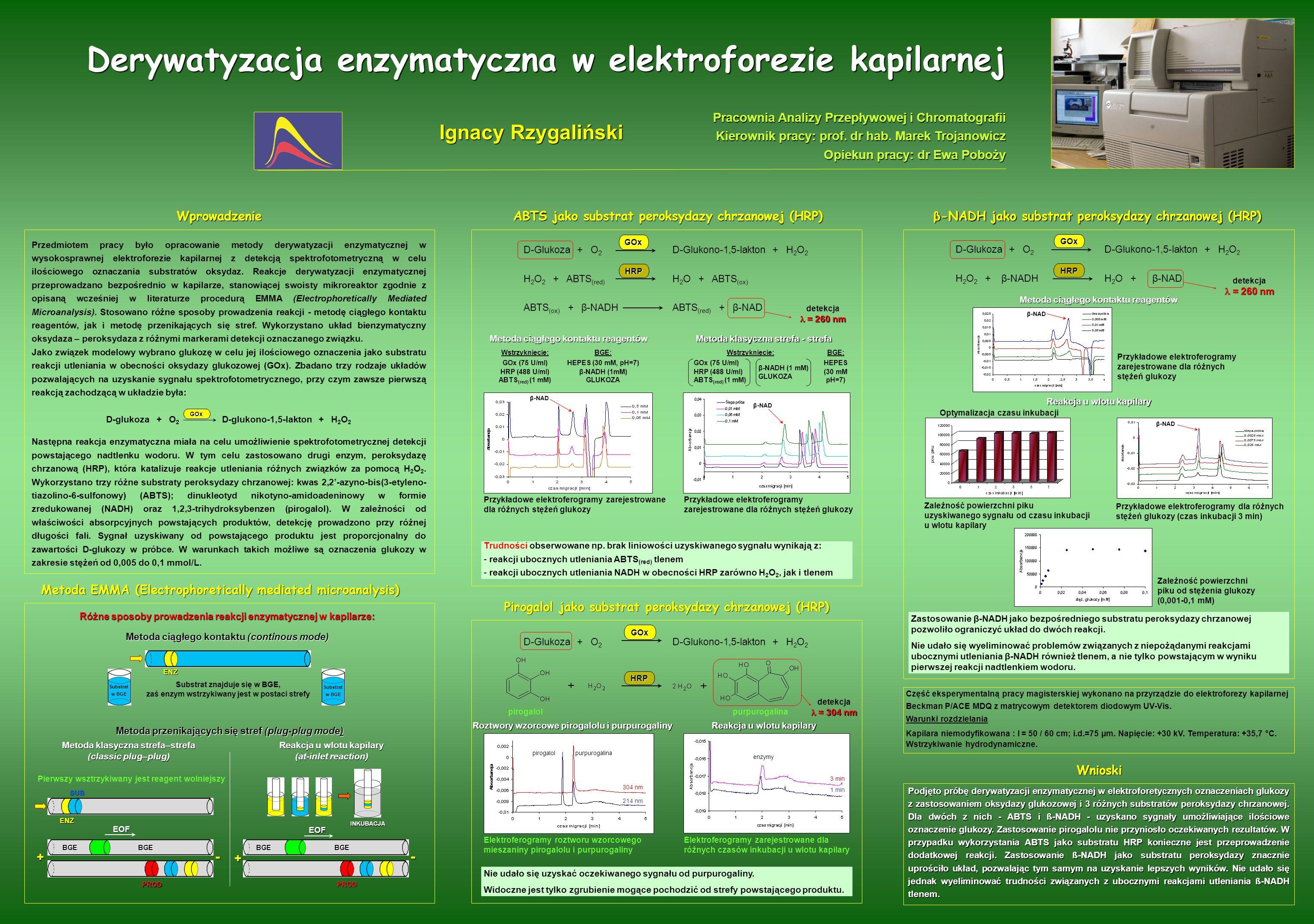 Derywatyzacja enzymatyczna w elektroforezie kapilarnej