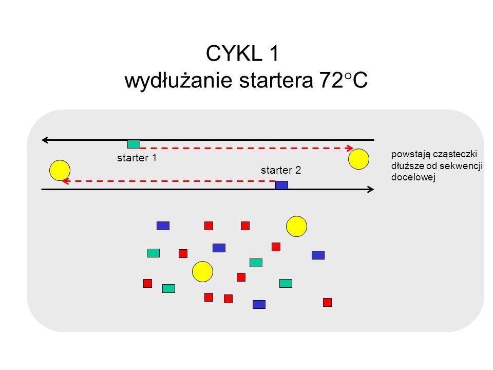 wydłużanie startera 72C